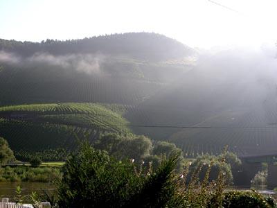 2007-08-23-nebel.jpg