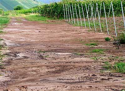 2009-07-03-erosion.jpg