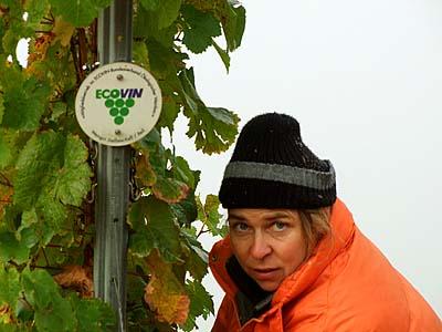 2009-10-19-kalt.jpg