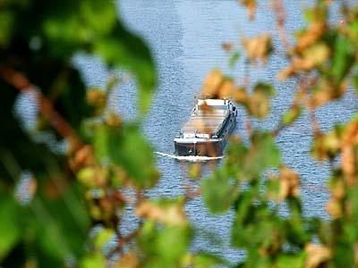 2009-10-21-schiff.jpg