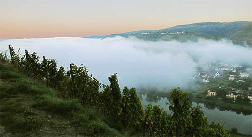 2010-10-12-nebel.jpg