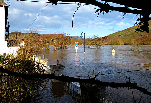 2011-01-09-hochwasser.jpg
