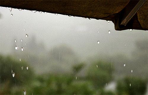 2014-08-10 Regen