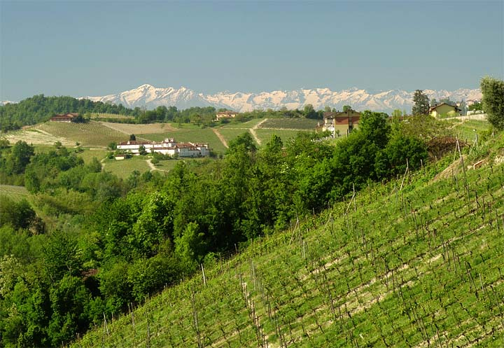 2017-04-25 Barolo Landschaft Alpen