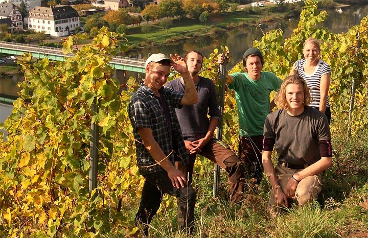 2017-10-16 Ernteende Weingut Steffens-Keß
